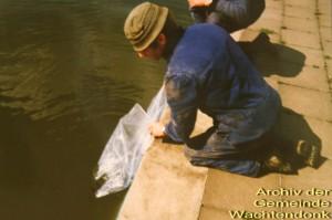 1989-noch-mehr-fische