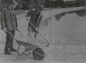 1995-Fleissige-Helfer